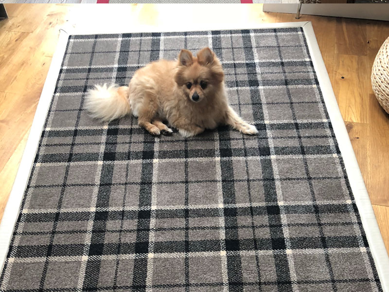 Tartan Rug Edged In Faux  Leather